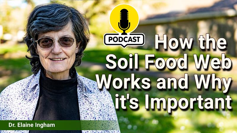 Dr Elaine Ingham on the Flora Funga Podcast